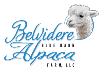 Belvidere Blue Barn Alpaca Farm, LLC - Logo