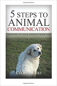 Photo of 5 Steps to Animal Communication