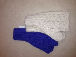 Photo of Trenza Fingerless Gloves