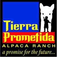 Tierra Prometida Alpaca Ranch - Logo