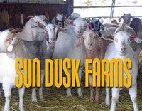 Sun Dusk Farms - Logo