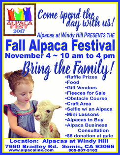 Photo of Fall Alpaca Festival Booth