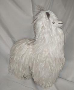 Photo of Silky Suri Alpaca