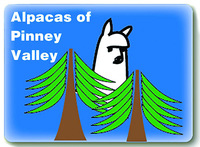 Alpacas Of Pinney Valley - Logo