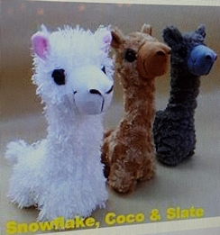 Photo of 'Paca Buddies