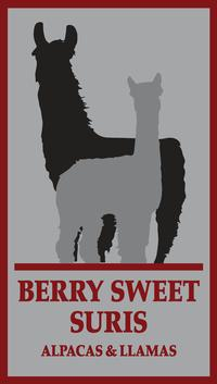 Berry Sweet Suris - Logo