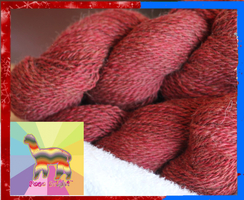 Photo of Paca Bright ™ Red
