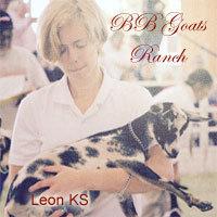 B B Goats - Logo