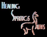 Healing Springs Suris LLC - Logo