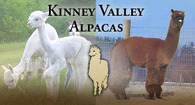 Kinney Valley Alpacas, Inc. - Logo