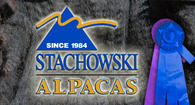 Stachowski Alpacas, LLC - Logo