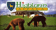 Highland Alpaca - Logo