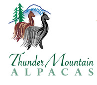 Thunder Mountain Alpacas - Logo