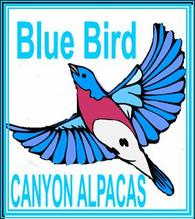 Blue Bird Canyon Ranch - Logo