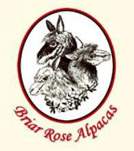 Briar Rose Alpacas - Logo