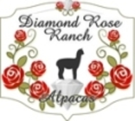 Diamond Rose Ranch - Logo