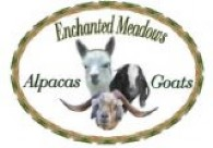 Enchanted Meadows Alpacas - Logo