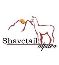 Shavetail Alpaca - Logo