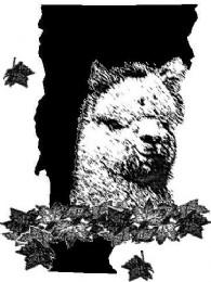 Mystic Meadow Alpacas - Logo