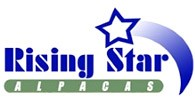 Rising Star Alpacas - Logo