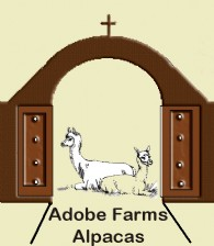 Adobe Farms Alpacas - Logo