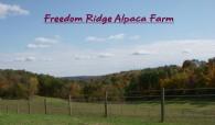 Freedom Ridge Alpaca Farm - Logo