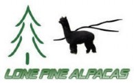 Lone Pine Alpacas - Logo