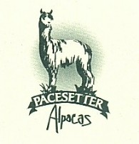 Pacesetter Alpacas - Logo