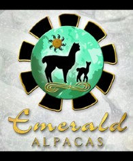 Emerald Alpacas - Logo