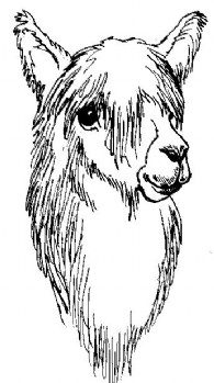 Earthcare Suri Alpacas LLC. - Logo