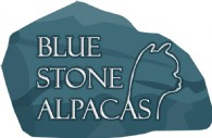 Blue Stone Alpacas - Logo