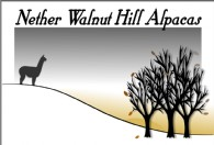 Nether Walnut Hill Alpacas - Logo
