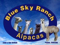 Blue Sky Ranch Alpacas  - Logo