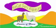 SoCal Suri Alpacas - Logo