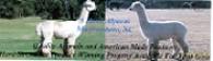 3 Hawk Alpacas - Logo