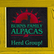 Photo of BURNS FAMILY ALPACAS COLLECTION!