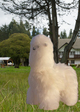 Photo of Stuffed Toy Alpaca - Standing 11""