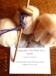 Photo of Drop Spindle Kit with Alpaca Rovings