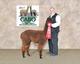 Photo of Herd Starter Package