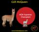 Photo of GLR McQueen