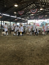 6th Place Udder over all