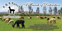 R & R Ranch  - Logo