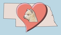 Alpacas of the Heartland LLC - Logo