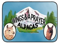 Wings and A Prayer Alpacas - Logo