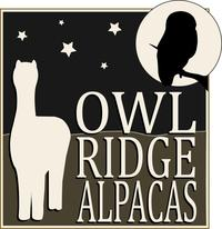 Owl Ridge Alpacas - Logo
