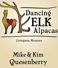 Dancing Elk Alpacas - Logo