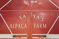 YaYa's Alpaca Farm   - Logo
