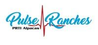 Pulse Ranches Texas - Logo