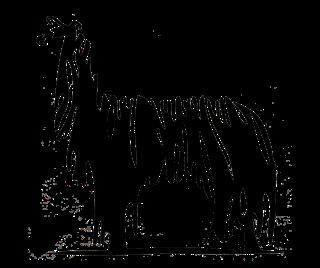 Justorian Alpacas - Logo