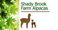 Shady Brook Farm LLC - Logo